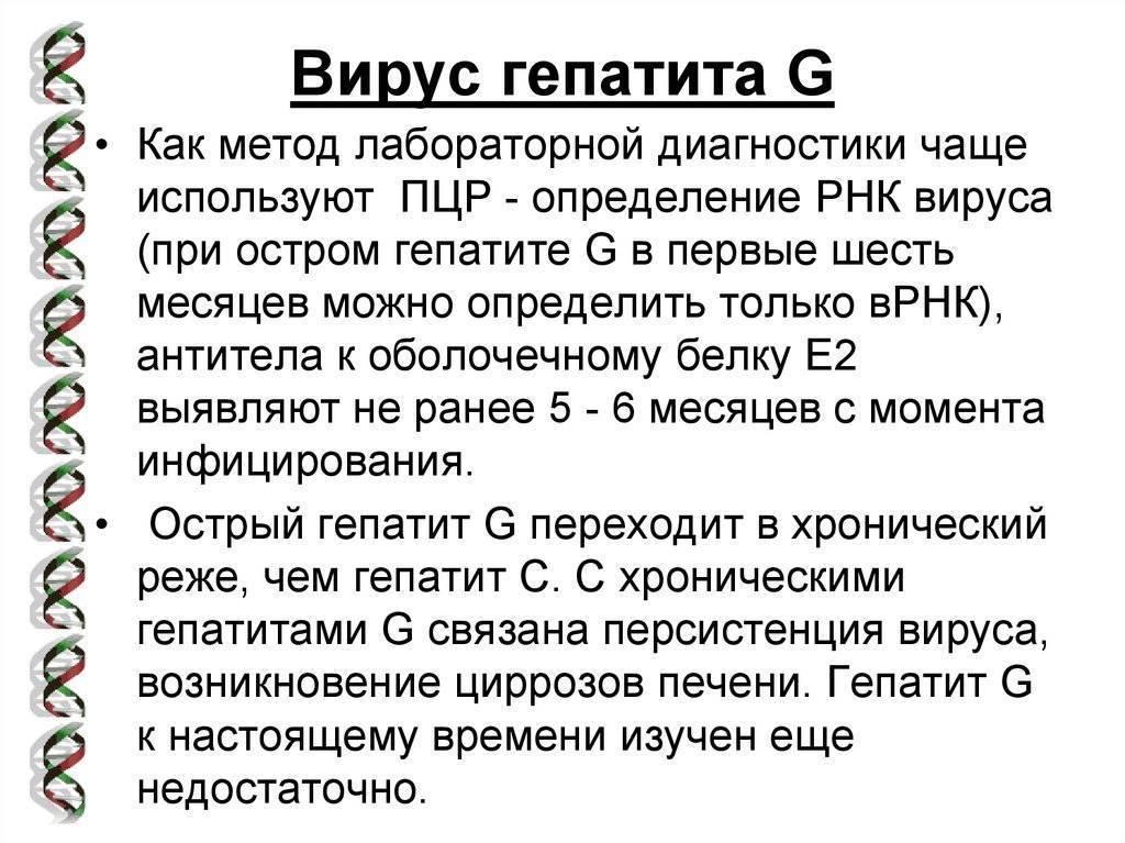 Всё о вирусных гепатитах a, b, c, d, g