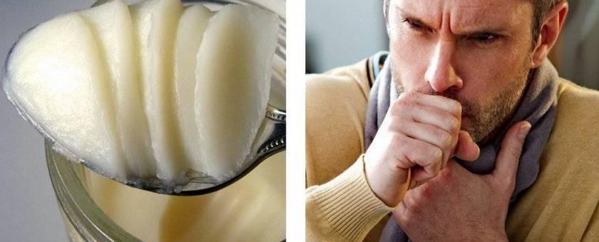 Гусиный жир лечебные свойства при кашле взрослому