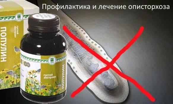 препараты от описторхоза у взрослых