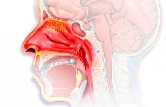 Чем разжижить сопли в носоглотке у грудничка