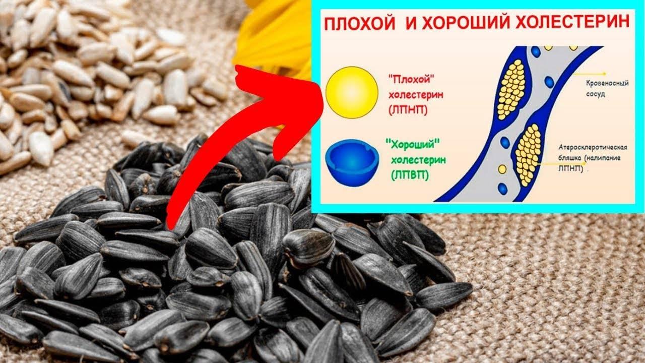 тыквенные семечки при холестерине