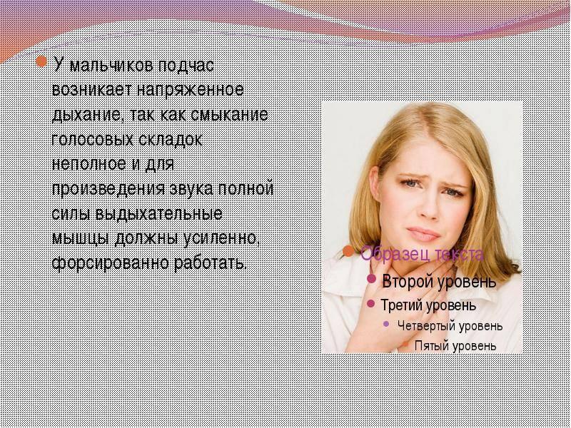 Анатомические особенности глотки и гортани