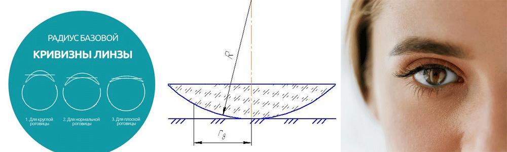 стандартный радиус кривизны контактных линз