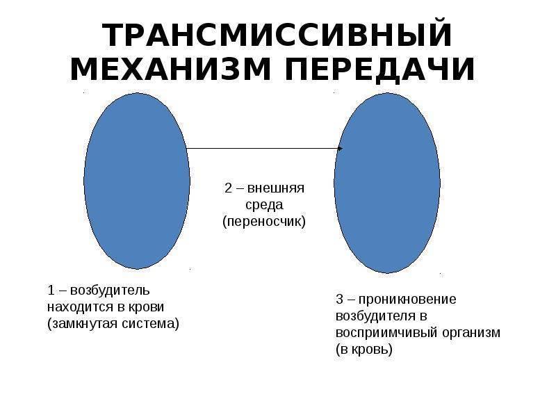 Механизм передачи инфекции — википедия с видео // wiki 2