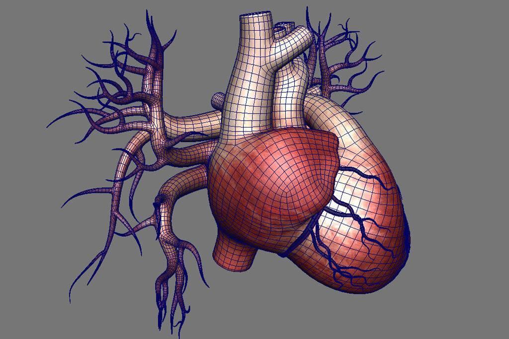 кашель при сердечной недостаточности
