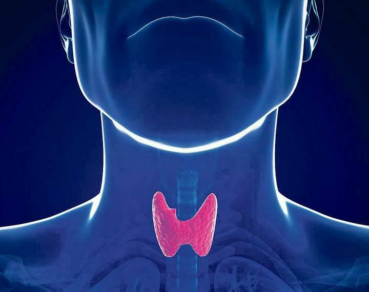 Щитовидная железа лечение у детей 7 лет
