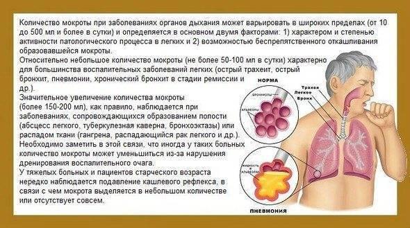 кашель с мокротой без температуры у взрослого