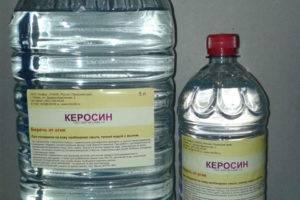 Лечение ангины керосином: особенности, рецепты, противопоказания