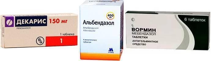 Аскаридоз у взрослых симптомы и лечение медикаментозными и народными средствами