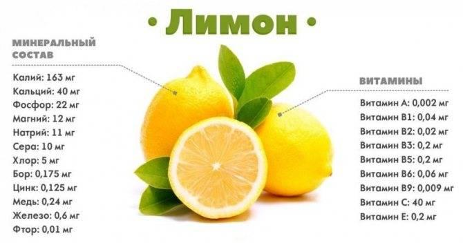Лимон при ангине: можно ли его есть или нет, помогает ли от гнойной, имеются ли противопоказания для взрослых и детей?