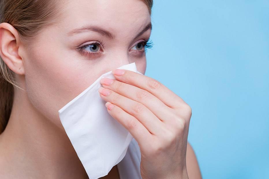 почему холодный нос