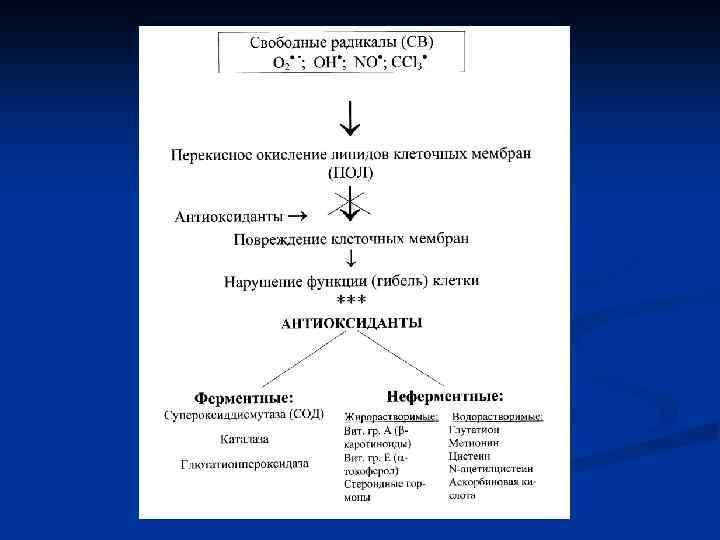 Перекисное окисление липидов, роль в патогенезе повреждений клетки - обмен липидов - биохимия учебник для вузов - е. с. северина - 2004