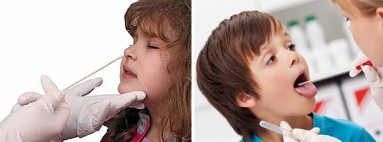 Мазок из носа и зева на флору и чувствительность к антибиотикам: расшифровка и показания к проведению исследования