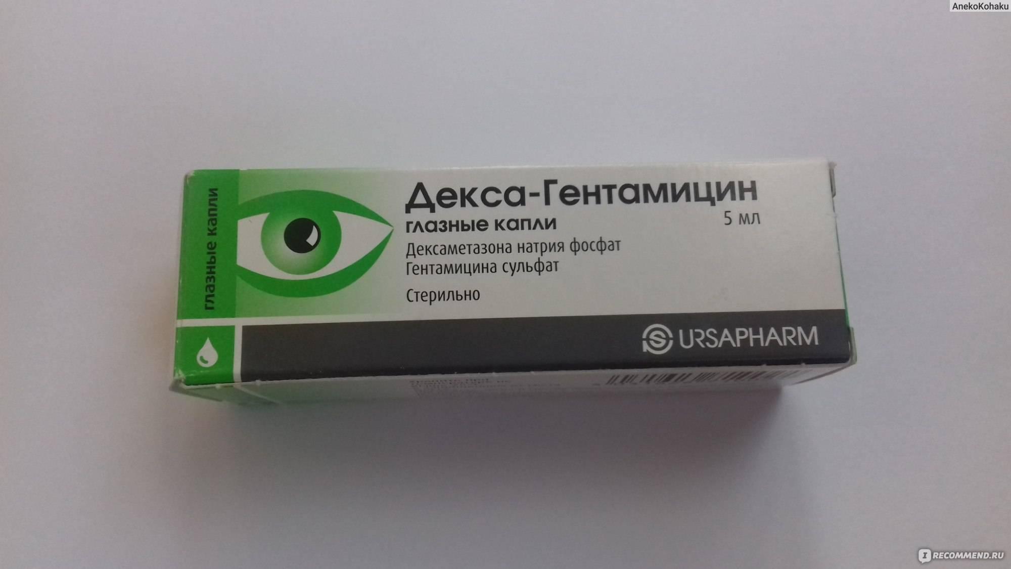 Глазные капли гентамицин – показания к применению, дозировка. антибиотик гентамицин – аналоги