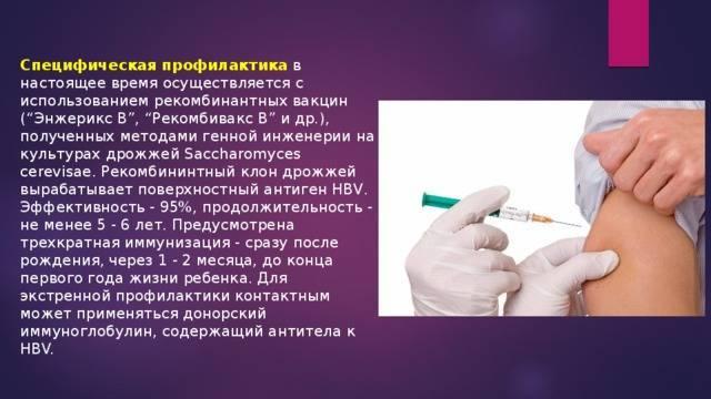 Гепатит б что это за болезнь