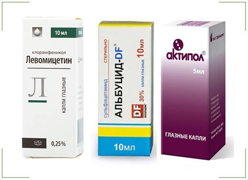 Актипол против раздражения глаз и вирусных инфекций