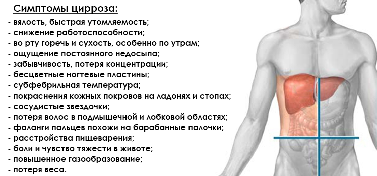Повышение температуры при заболеваниях печени - лечение печени