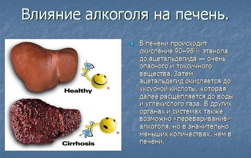 лечим печень после алкоголя