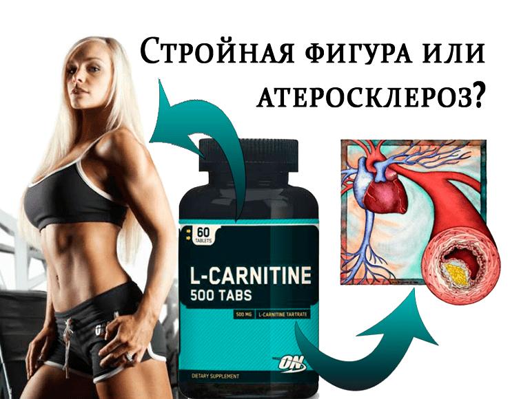 L-карнитин: для чего нужен, польза и вред, правила приема и рейтинг лучших