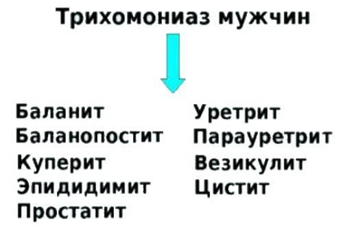 трихомонады у мужчин симптомы