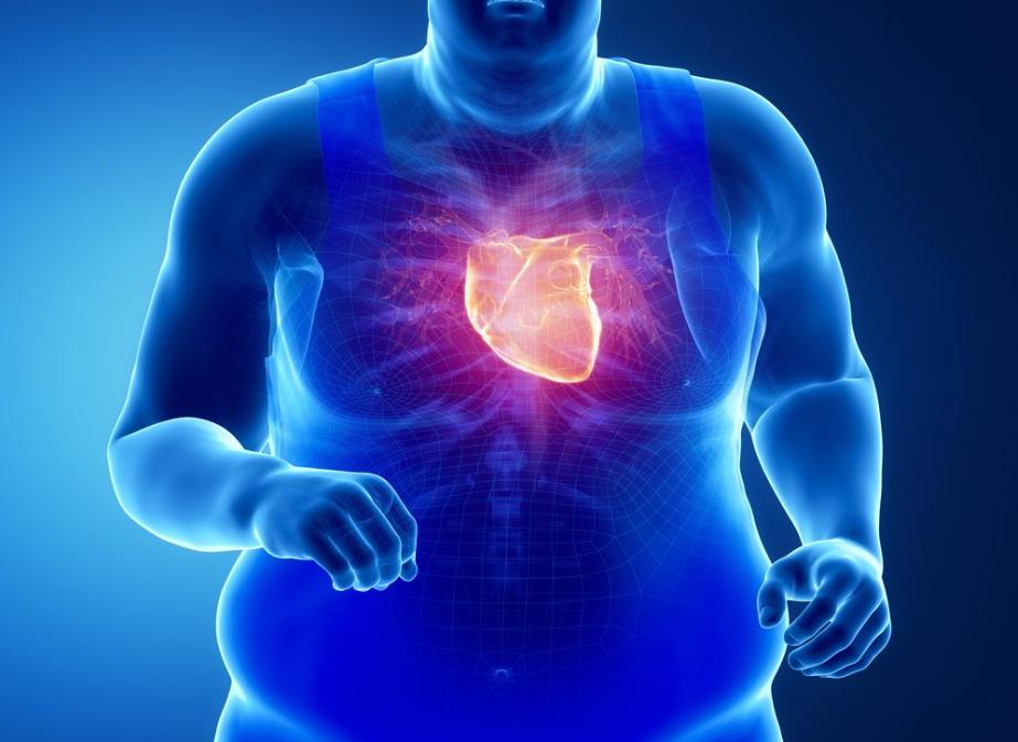 Что нужно  щитовидной железе?