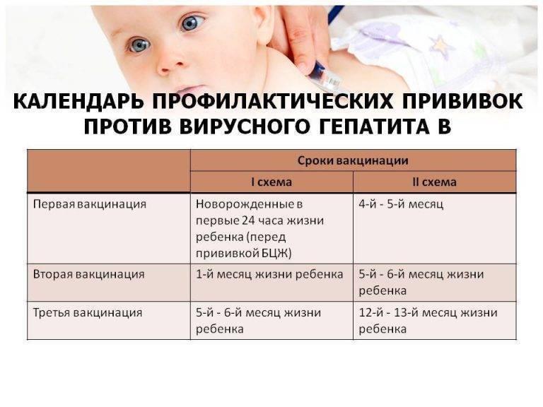 прививки от гепатита в детям схема