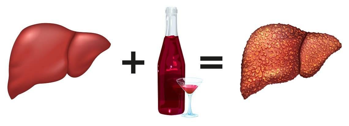 Можно ли пить алкоголь при гепатите с и что будет, если не отказываться от спиртного