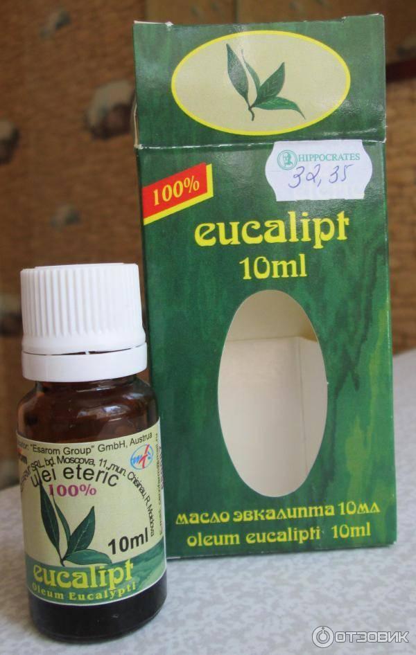 Эвкалипт лечебные свойства для детей от кашля и насморка