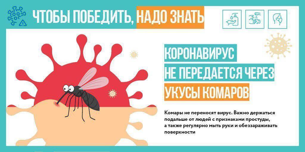 Заразиться гепатитом с через поцелуй