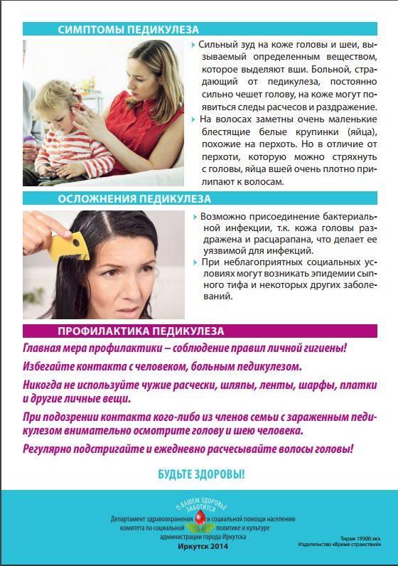 Профилактика педикулёза: в школе, детском саду, в домашних условиях, средства, шампуни, памятка для родителей, фото, видео