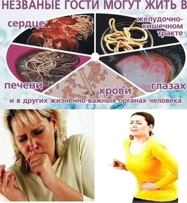 откуда появляются глисты у человека