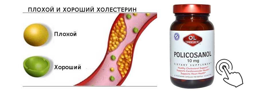 холин холестерин