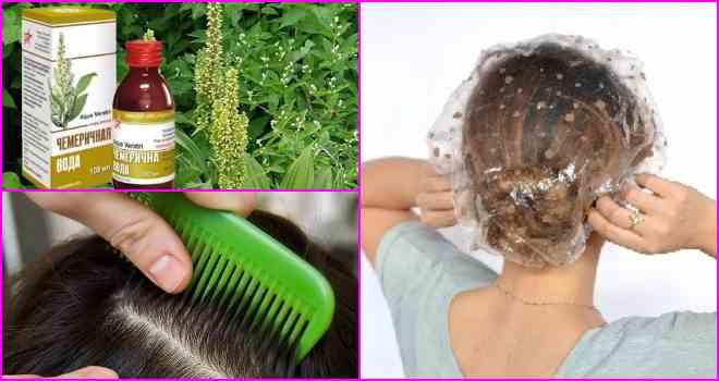 Чемеричная вода от вшей и гнид: действие на паразитов при лечении педикулёза