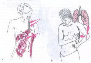 Боль в кадыке: при глотании и при прикосновении. причины и лечение