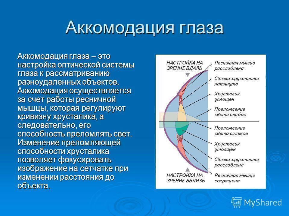 Причины, симптомы, диагностика и лечение нарушений аккомодации