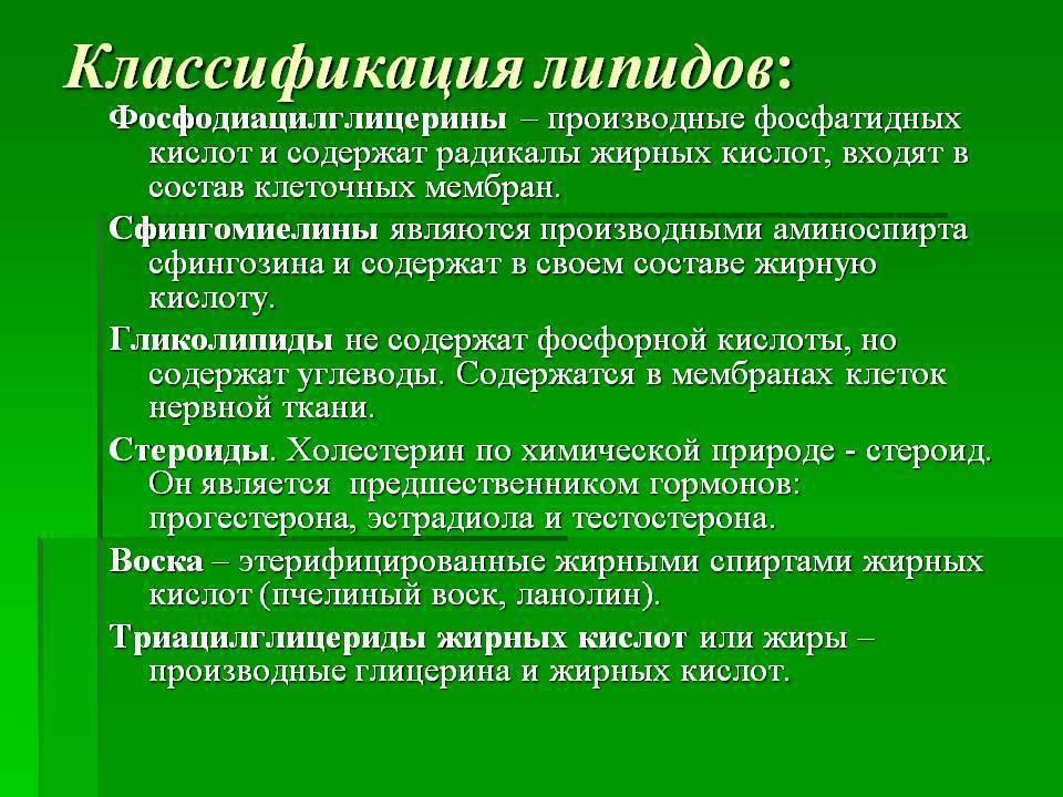 Липидный обмен — википедия с видео // wiki 2