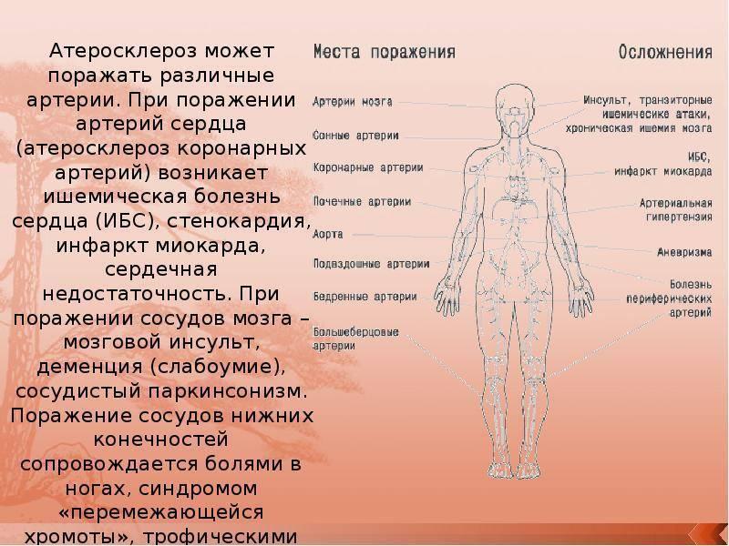 атеросклероз лечение пожилые