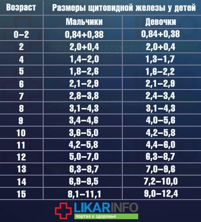 Размер долей щитовидной железы у женщин норма таблица: анализы, долей, железы, женщин, как передается, норма, размер, симптомы и лечение, схема, таблица, щитовидной