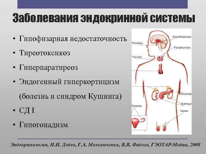 Проблемы эндокринной системы у женщин. симптомы болезни - нарушения эндокринной системы