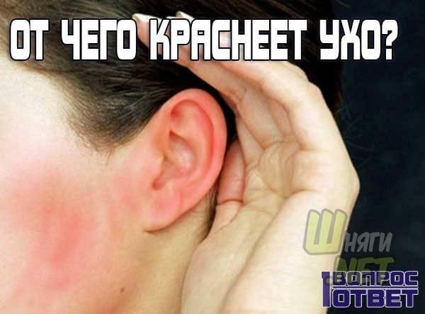 Лечение зуда в ушах народными средствами