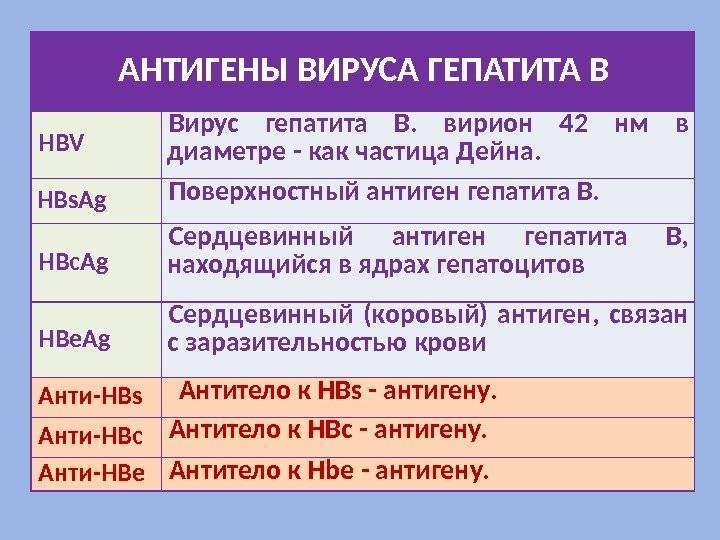 гепатит в антитела в крови