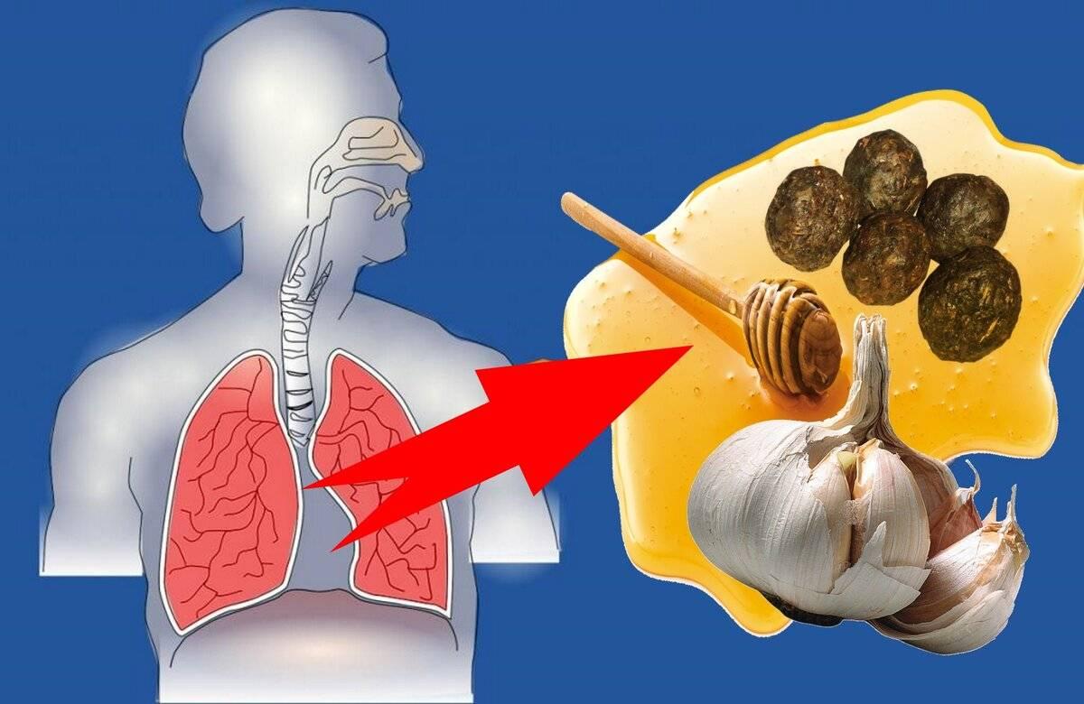 Прополис при повышенном холестерине