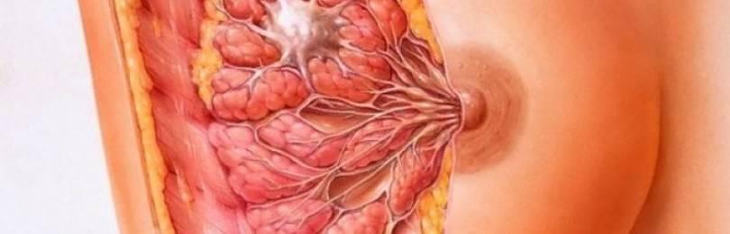 Как вылечить киста на молочной железе народными средствами