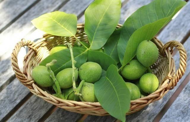 Зеленый грецкий орех лечение щитовидной железы настойка