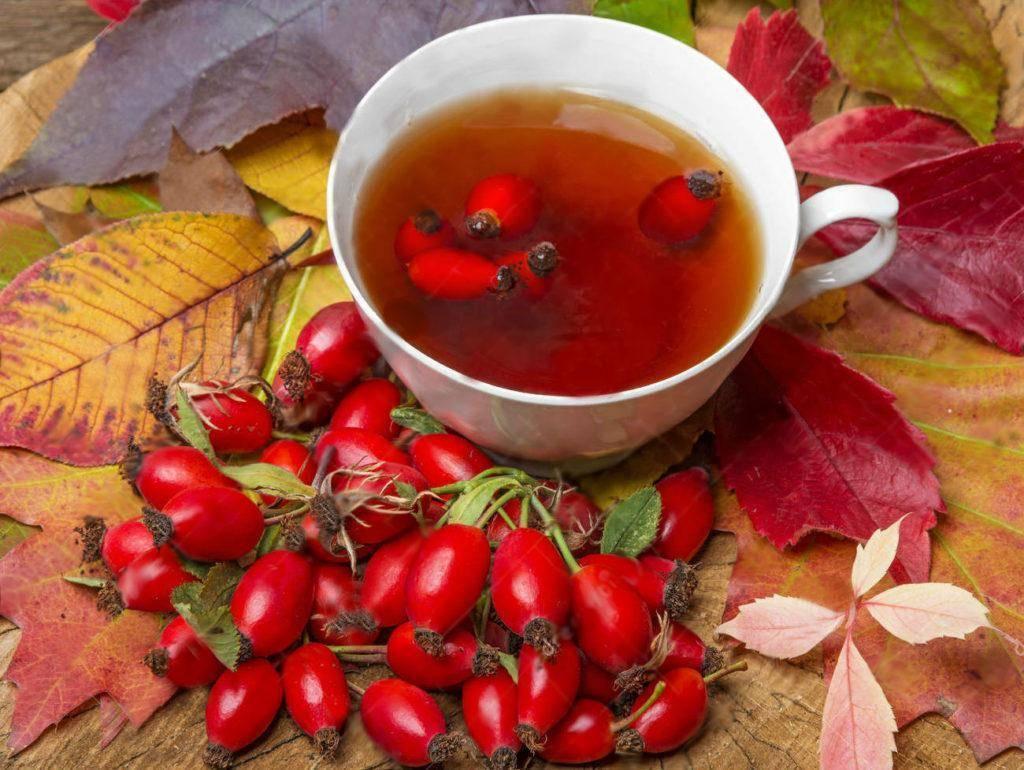 Чистка печени сорбитом и шиповником — рецепты и противопоказания