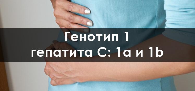 Гепатит с генотип 1b: причины возникновения, особенности развития. основные схемы лечения и прогноз