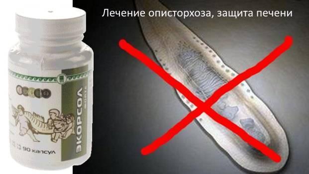 препараты для лечения описторхоза у взрослых