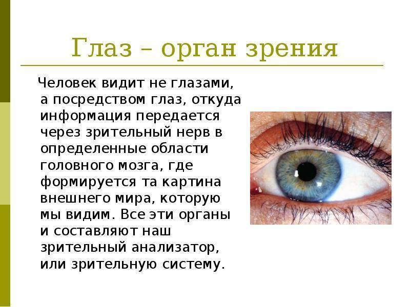 Виды нарушения зрения и методы традиционного лечения