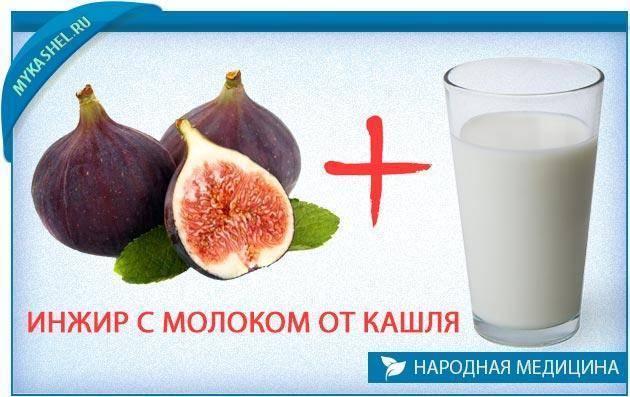 молоко с инжиром от кашля для детей