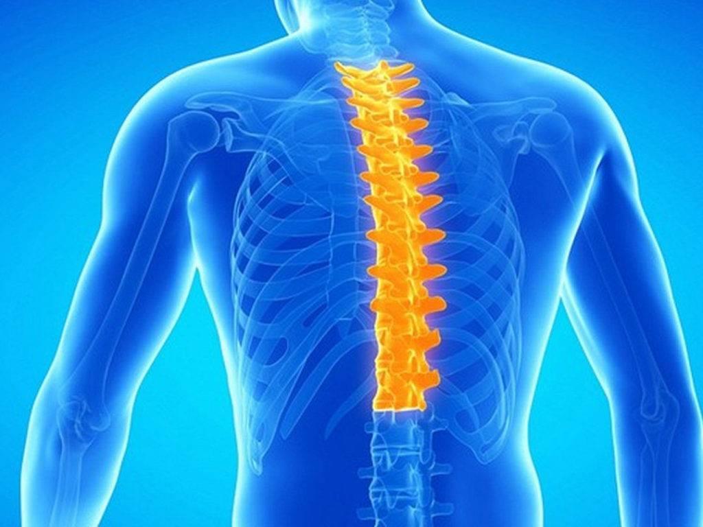 Симптомы и лечение невралгии спины у взрослых